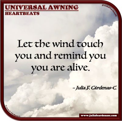 Universal Awning: Heartbeats. Quote and thought about feeling alive. @JuliaFCardenasC
