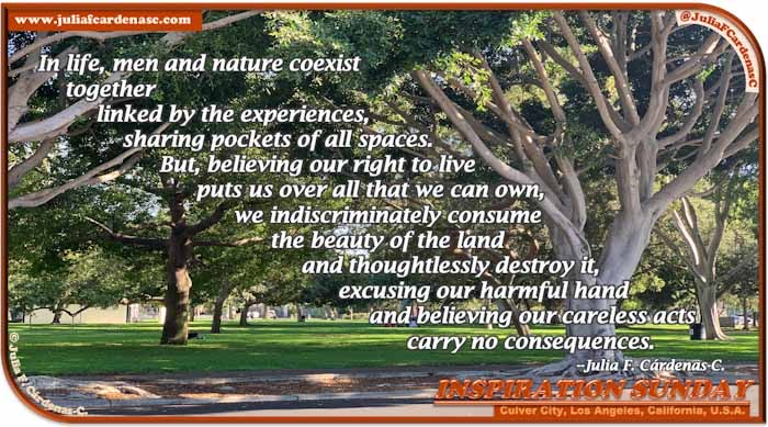Poem-In-A-Photo. Poem about the symbiotic relationship of humanity and nature. Photo of a park with lots of trees and bright, green grass with some people sitting around in the far in Culver City, Los Angeles, California, USA. @JuliaFCardenasC