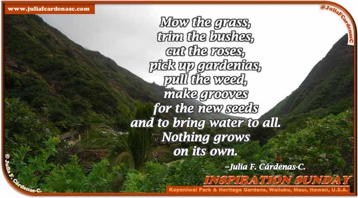 Poem-In-A-Photo. Poem about life. Photo showcasing the grand of nature at the Kepaniwai Park and Heritage Gardens in Wailuku, Maui, Hawaii, USA. @JuliaFCardenasC