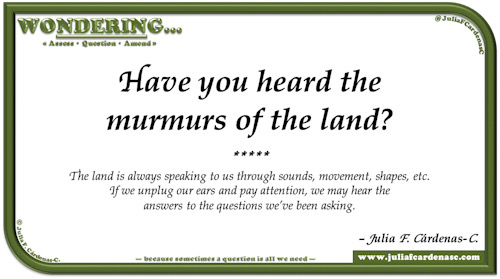 Wondering… Question and answer card pondering and reflecting about nature and its sounds, and how both affect human beings. @JuliaFCardenasC