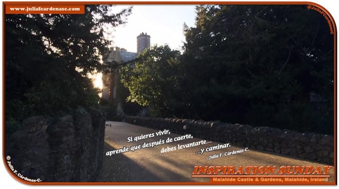Inspiration Sunday Poem-In-A-Photo. Poema de 4 líneas puesto en el camino que lleva al Castillo de Malahide en la ciudad de Malahide, en Irlanda. En la foto, la hora del ocaso está cerca, el sol brilla en el camino dando una sensación de esperanza al mirar la esquina del catillo Malahide a lo lejos. Las ramas verdes de los árboles parecen querer alcanzar el brillo del sol. Tag: @JuliaFCardenasC