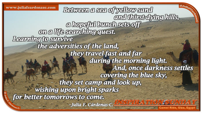 Poem-In-A-Photo. Poem about the meaning-of-life quest. Photo of people riding camels as if they were going on a trip. The animals walk over a mustard, yellow sand on a bright day in Giza, Egypt. @JuliaFCardenasC