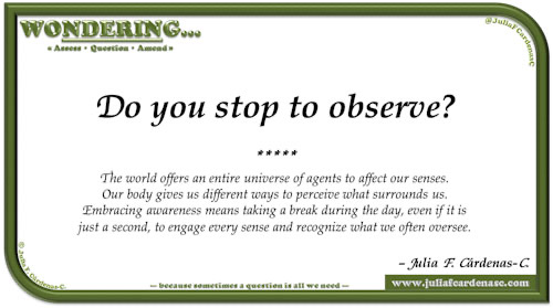 Wondering… Question and answer card pondering and reflecting about the world effect on the senses and how it helps recognize what we often oversee. @JuliaFCardenasC